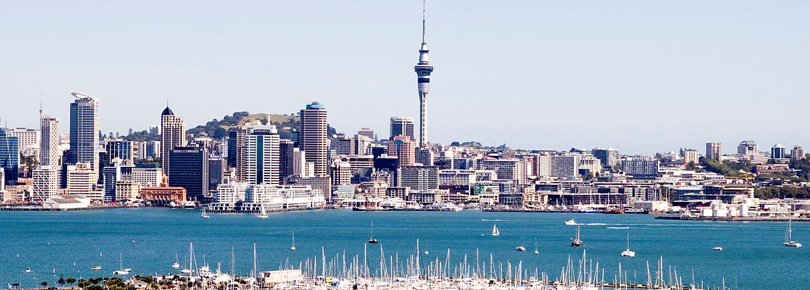 Car Shipping to Auckland | Roll On Roll Off Auckland | First Base Freight Ltd